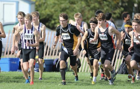 Boys Cross Country advances to sectionals