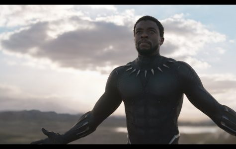 Black Panther shatters box office records