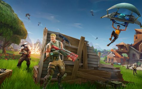 Fortnite takes world by storm