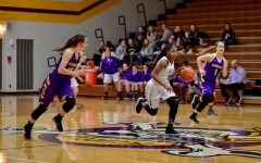 Lady Bucs shine in McHenry Tournament