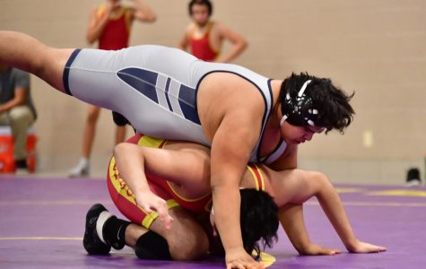 Wrestling finishes second in conference
