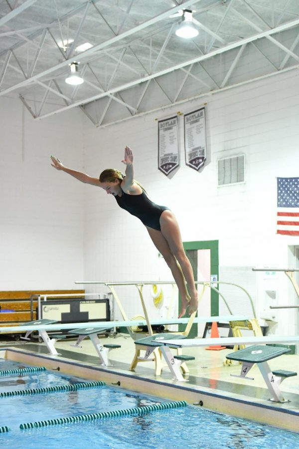 Belvidere Co-op Swim & Dive finished with a bang